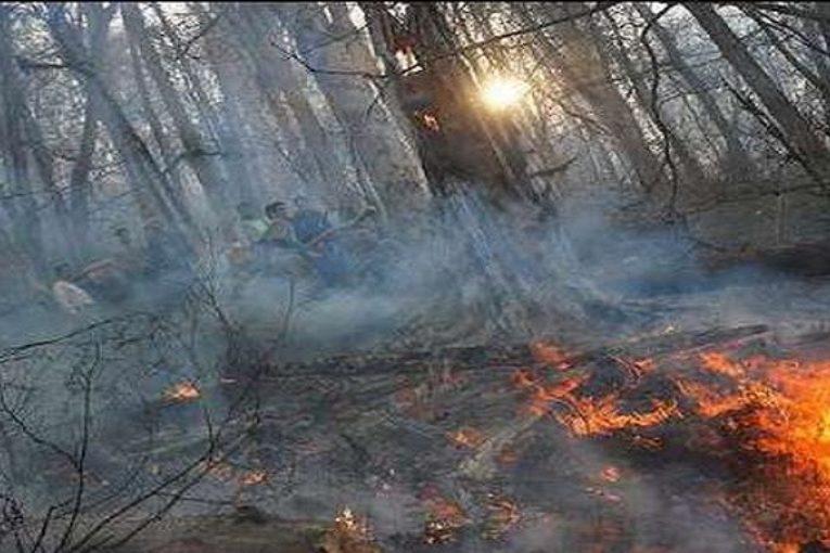 آتش سوزی در منابع جنگلی آزربایجان جنوبی – زنجان