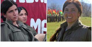تایید خبر کشته شدن دو تن از فرماندهان گروه تروریستی پ ک ک