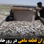 مرگ هزاران قطعه ماهی در رورخانه جیغاتی