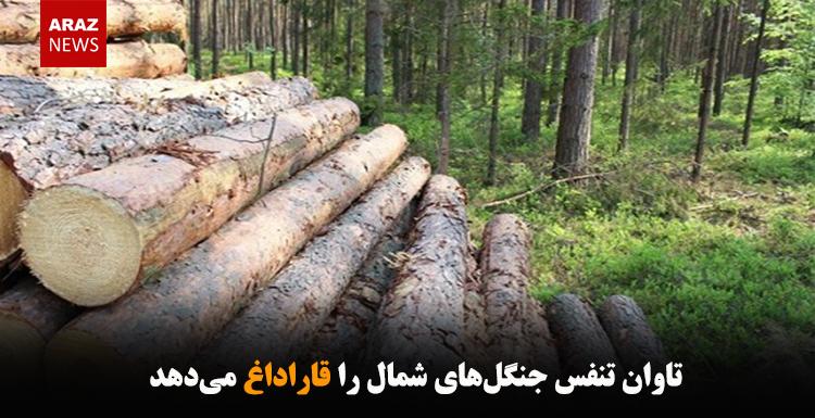 تاوان تنفس جنگلهای شمال را قاراداغ میدهد