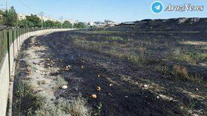 آتشسوزی گسترده در تپه باستانی همدان