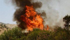۱۴۰ هکتار از مراتع و اراضی مُشجر خداآفرین طعمه حریق شد