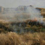 ۵۰۰ هکتار از اراضی طارم زنجان در آتشسوزی خاکستر شد