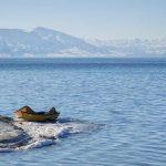 سهم ناچیز دریاچه اورمیه از بودجه