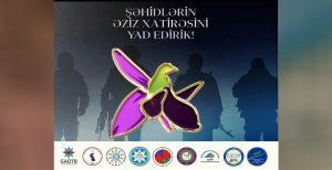 """بیانیه شورای همکاری احزاب آزربایجان جنوبی به مناسبت """"روز یادبود"""" جنگ دوم قاراباغ"""